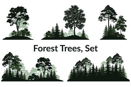 흰색 배경에 고립 된 집합 풍경, 녹색 구과 맺는 낙 엽 나무와 관목 류 실루엣, 전나무, 소나무, 단풍 나무, 아카시아, 라일락. 벡터