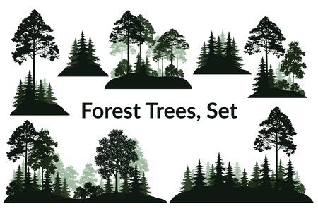 Conjunto aislado sobre fondo blanco Paisajes, coníferas verdes y árboles de hoja caduca y arbustos siluetas, abeto, pino, arce, acacia, lila. Vector Ilustración de vector