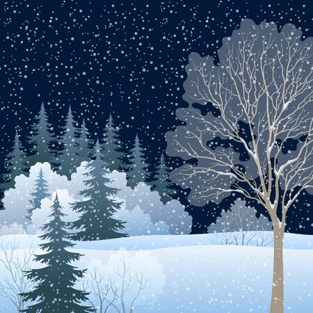Winter Christmas Holiday Woodland Night Landscape, Forest with Snow Covered Trees and Snowflakes, Contains Transparencies. Illustration