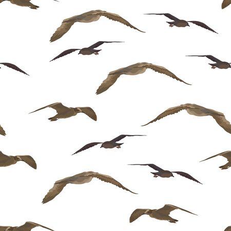 Seamless Background, Flying Birds Gulls, Tile Pattern Isolated on White Background. Vector Illustration
