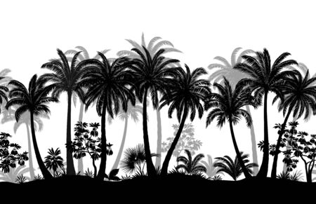 Summer Tropical Forest Silhouettes on White