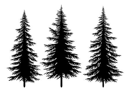 Set Christmas Fir Trees, Black Silhouettes Isolated On White Background. Vector Vetores