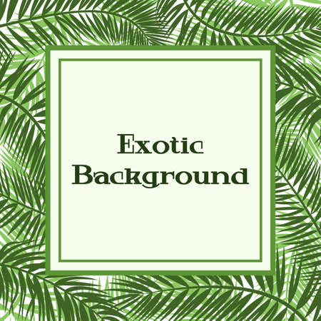 Floral Background, Green Tropical Palm Tree Leaves and Frame. Vector