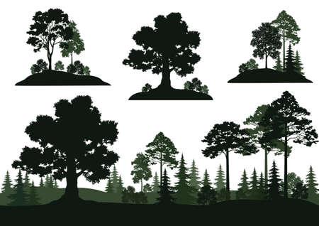 Set Landscapes