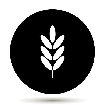 Ears of wheat, cereal. Ear of oats. Rye ears Illustration
