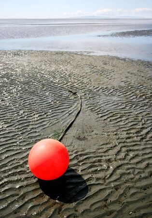 Lonely Buoy photo
