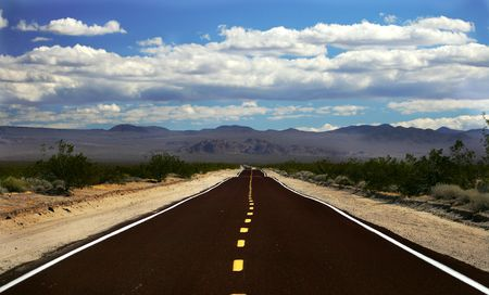 chaparral: Empty road, Mojave Desert, Nevada