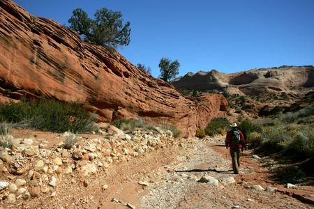 Lonely hiker in Utah desert Banco de Imagens