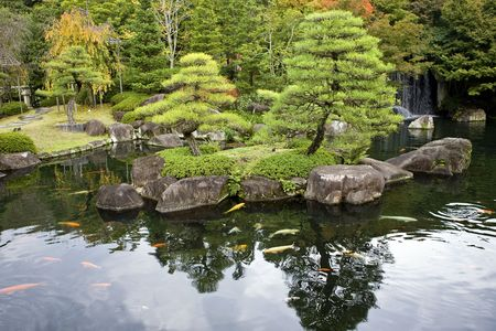 koi fish pond: Pond in Autumn foliage in Japanese garden, Kyoto, Japan
