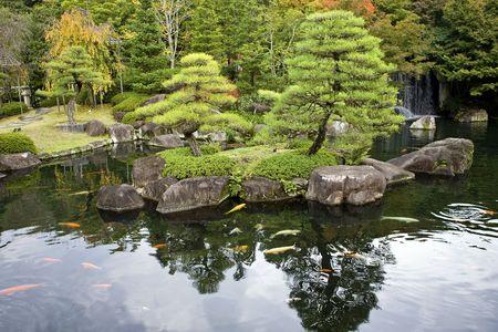 Pond in Autumn foliage in Japanese garden, Kyoto, Japan