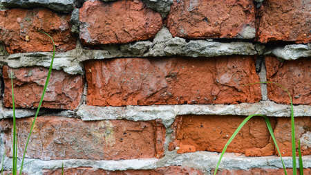 Part of an old red brick wall with cement and grass stems. Close-up old brick wall texture. Worn wall of red stones. Falling brickwork. Masonry with cement. Macro shot of wall with cracks.