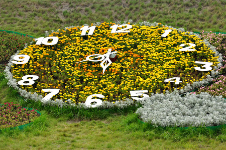 8 12: Garden-bed like a big summer clock Tick-tack