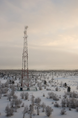 wintriness: Telecommunications tower and satellite dish telecom network on evening sky with sundown and winter north forest