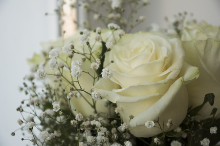 White tender roses in the bouquet