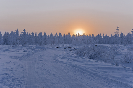 Sundown and sunrises. Winter landscape. Orange sky and silhouettes of trees on the background of heaven. Frosty evening, snow around. North Stock Photo