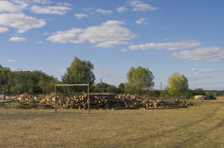 Firewood and green trees in the field. Suburb. Gray clouds in the sky. Summer Stok Fotoğraf