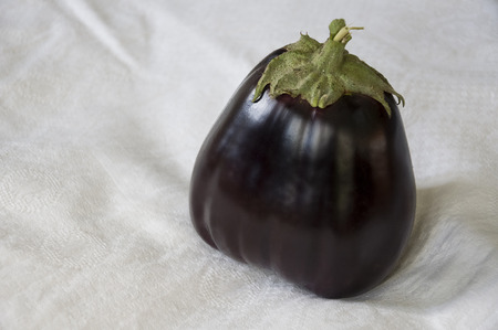 One rape eggplant is laying on the white background. Autumn vegetables. Delicious healthy food