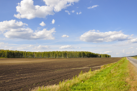 Black field with trees far away. Cultivated area. Agriculture. Bright blue sky and green grass