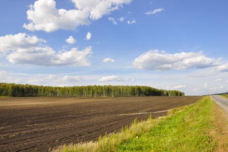 Zwart veld met bomen ver weg. Gecultiveerd gebied. Landbouw. Helderblauwe lucht en groen gras