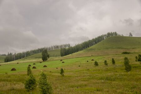 Mountains Green field with trees and trees far away. Summer, august. Dark gray clouds above