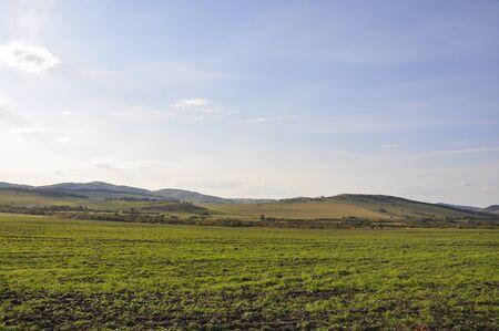 Soft lands?ape with green meadows and mountains far away. Light blue sky. Summer fields