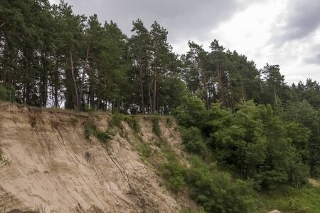 Sand quarry in the forest. Breakage or precipice, fall ... Summer landscape