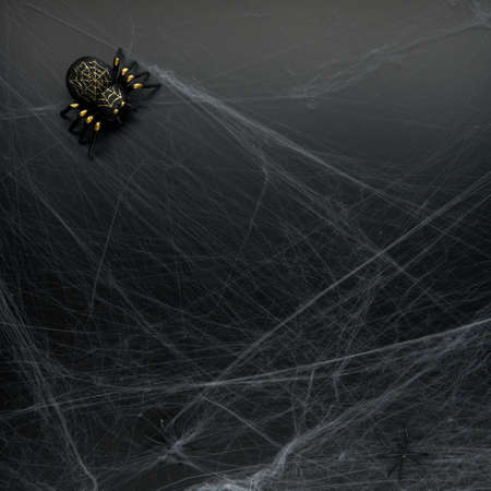 Decoration of artificial spider web and spiders over black background. Happy halloween and horror concept. Flat lay, top view, copy space..
