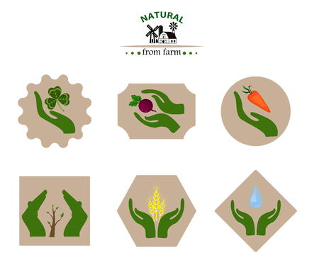 Organic products from the farm. Vegetables, flat design illustration