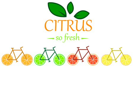 Citrus Bicycle icon mix of lemon lime grapefruit and orange. Çizim