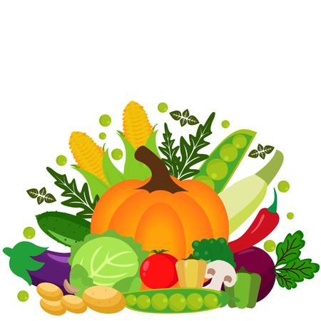 Vector vegetables illustration.