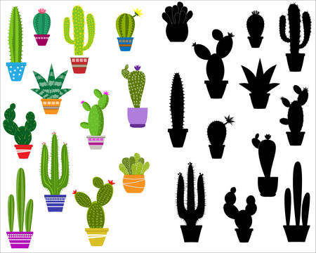 Vector home cactus icons. Cactus icons in a flat style on a white background. Home plants cactus in pots