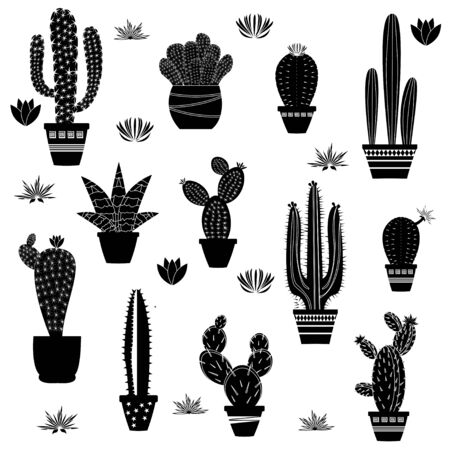 Cactus silhouettes illustrated on white background. Vector Illustration