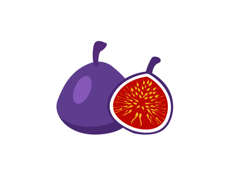 Fig, purple whole fruit and half.Summer tropical fruits for healthy lifestyle. Illustration