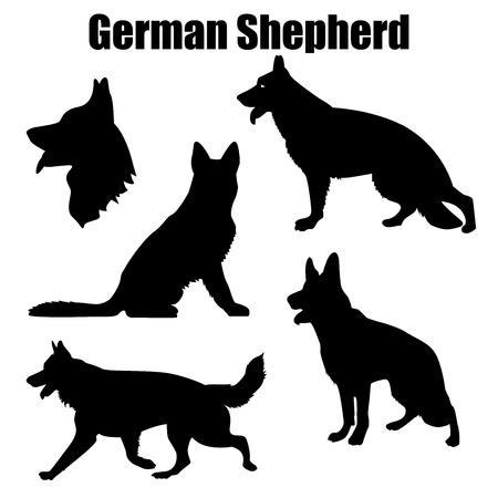 Vektorillustration des deutschen Schäferhundes in verschiedenen Posen lokalisiert auf weißem Hintergrund.