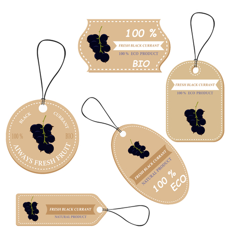 Labels with various fruits,for black currant  and inscriptions. Set templates price tags for shops and markets of organic vegetarian food. Vector illustration