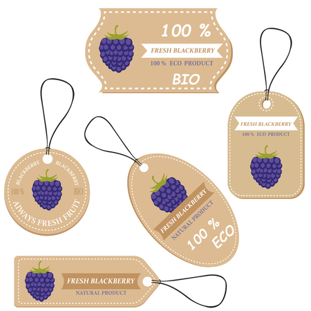 Labels with various fruits,for blackberry  and inscriptions. Set templates price tags for shops and markets of organic vegetarian food. Vector illustration