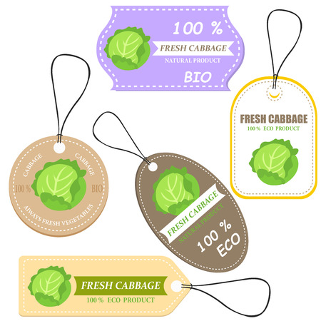 Vegetable tag and farm market veggies price labels set. Fresh cabbage sketch card with discount offer text