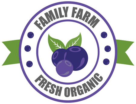 Vector round label blueberry. Fruit and berries from the farm. Organic food. Logo blueberry in the form of a circle for a restaurant or shop. Logo that can be used for company branding
