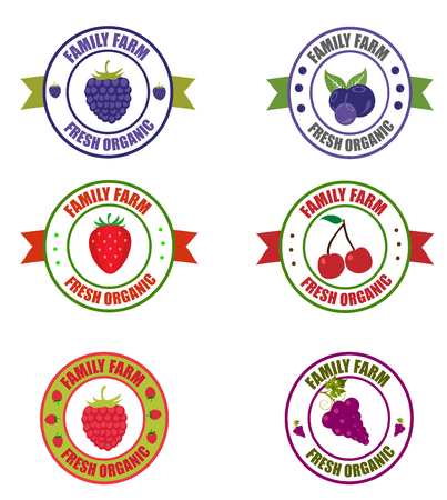 Fruit logo. Logos of blackberries, grapes, blueberries, strawberries, raspberries and sweet cherries. Vector round label fruit. Logo fruit in the form of a circle for a restaurant or shop Çizim