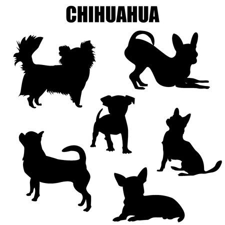 Chihuahua dog vector icons and silhouettes. Set of illustrations in different poses. Illustration