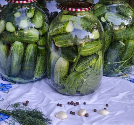 Pickled cucumbers in glass jar. Preservation of cucumbers for the winter.