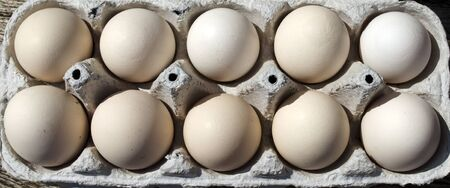 Light brown and speckled chicken eggs  Stok Fotoğraf