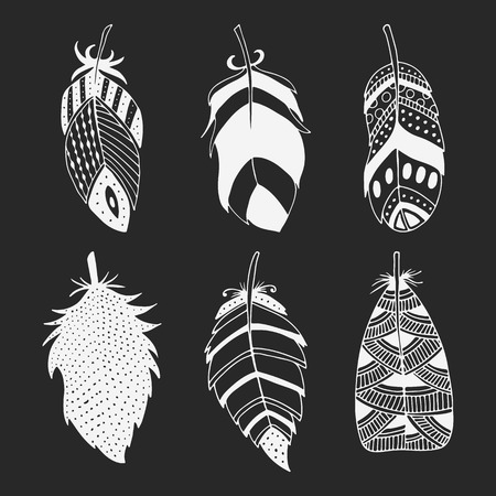 Cute hand drawn set of different feathers. Bird feather collection in doodle style. Vector illustration. Illustration