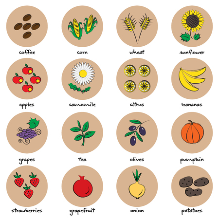 Icons of fruit and vegetables