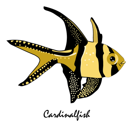 Cardinalfish Saltwater Aquarium Fish vector illustration