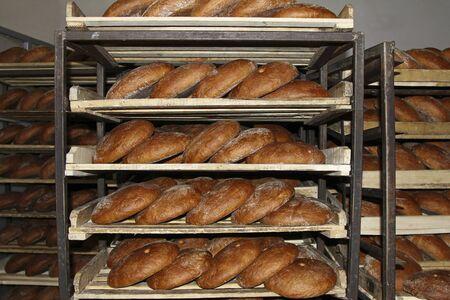 product range: freshly baked rye bread on shelves Stock Photo
