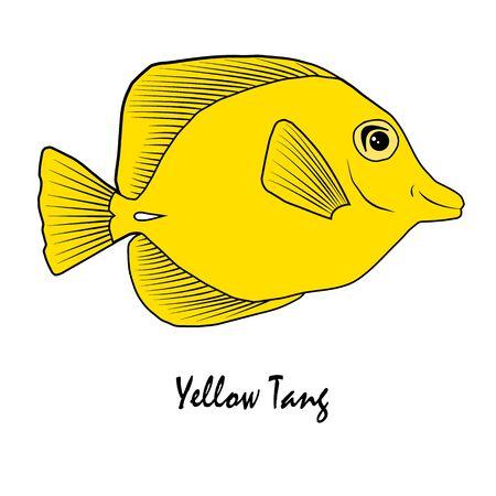 Yellow Tang Saltwater Aquarium Fish vector illustration