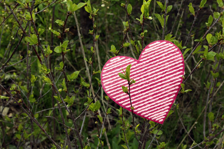 Valentines day background with heart on bush background Stock Photo