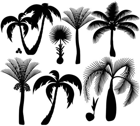 Set of black palm trees silhoettes