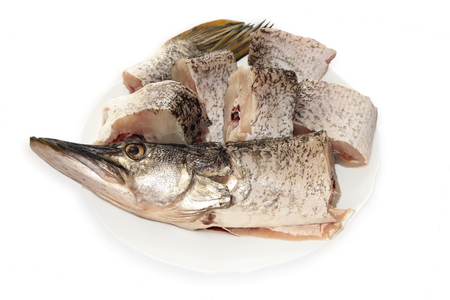 Raw pike on the plate isolated